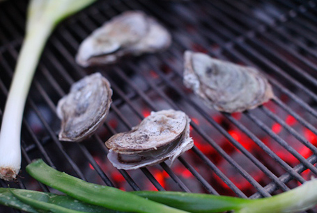 Grilled Oysters 4